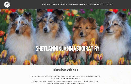 Shetlanninlammaskoirat ry uudisti verkkosivunsa WordPress-alustaan