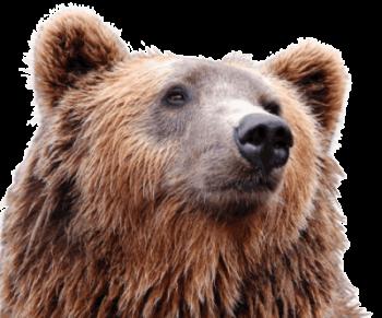 Artio Bear on maskottimme